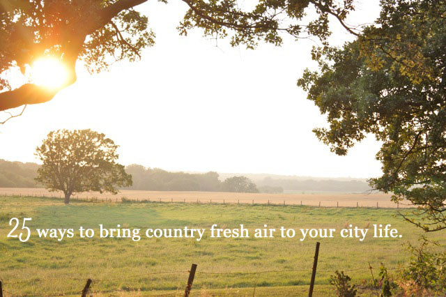 How to Enjoy Country Fresh Air Without Leaving Your Crazy City Life