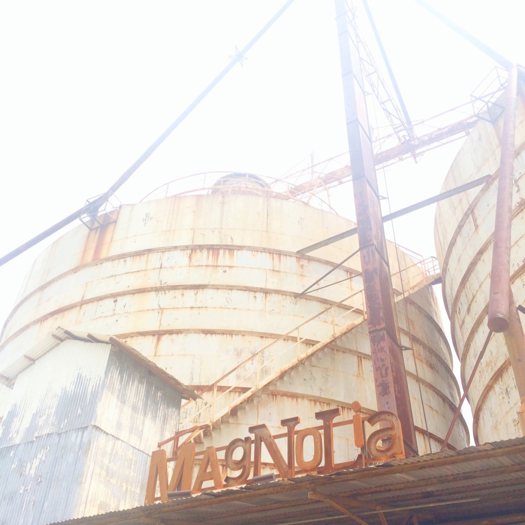 What I Learned About Creativity from Visiting Magnolia Market