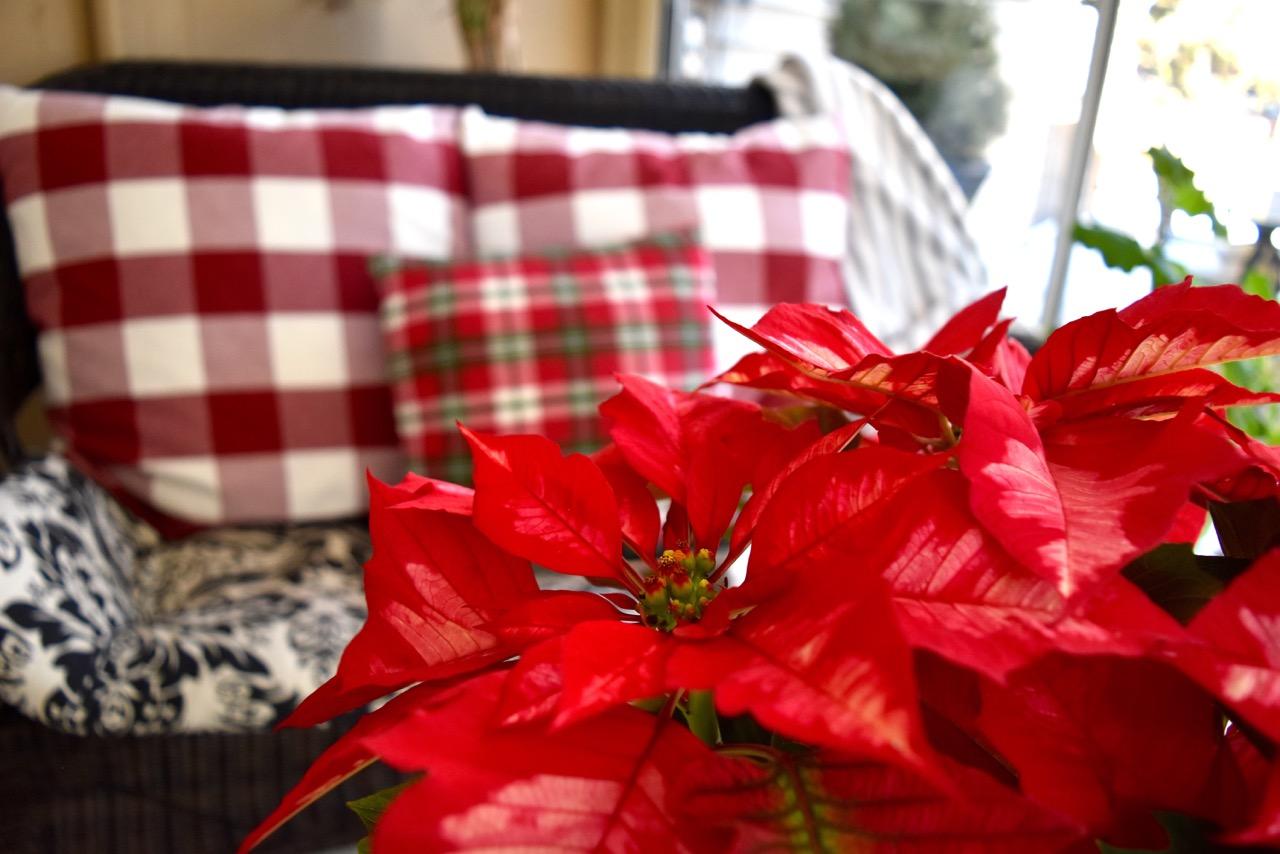 For You This Christmas