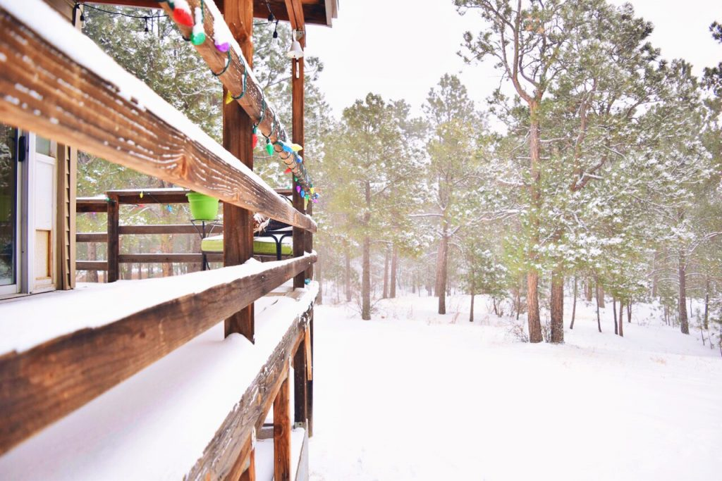 snowandevergreens